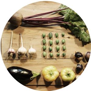 Obst und Gemüse vom BIO Hof