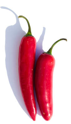 BIO Chili